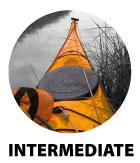course_logo_inter